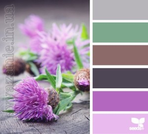 Оттенки фиолетового, сиреневого, фуксии