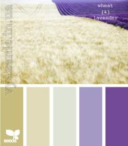 Оттенки фиолетового